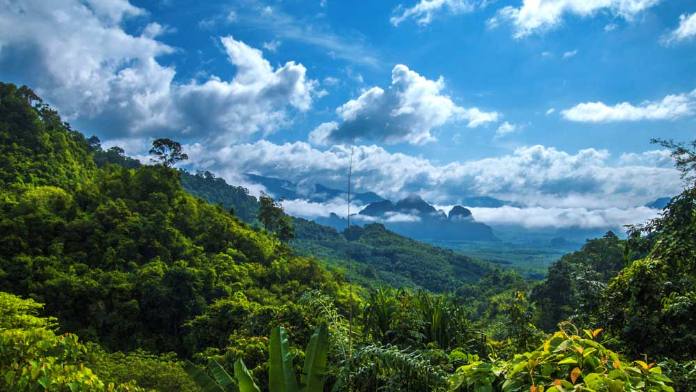 the view over Khao Sok National Park