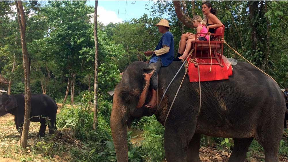 Elephant trekking is a popular Khao Lak tour