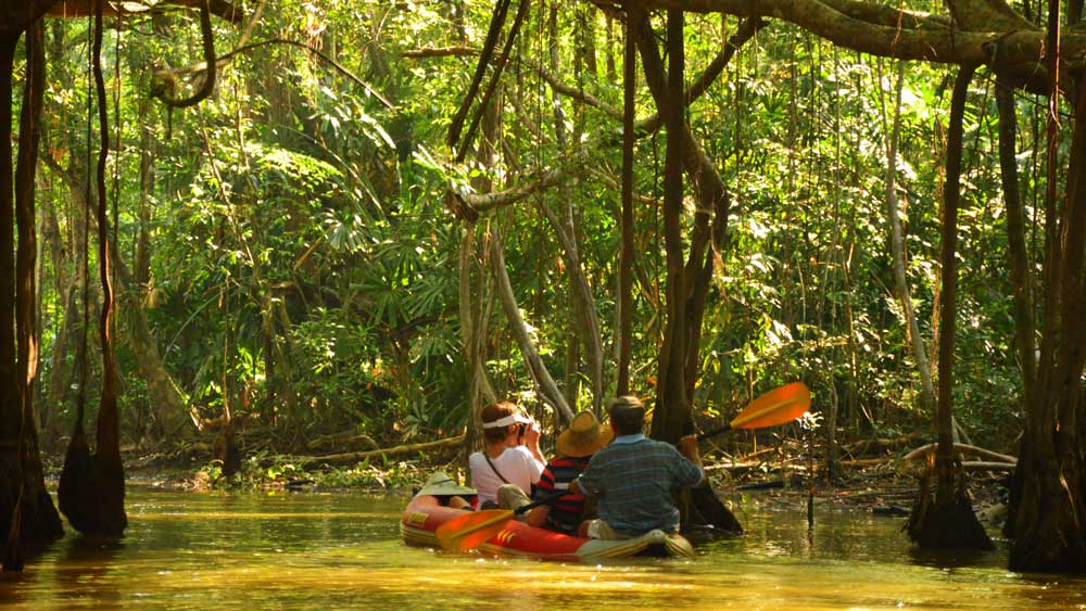 Kayaking on the Little Amazon