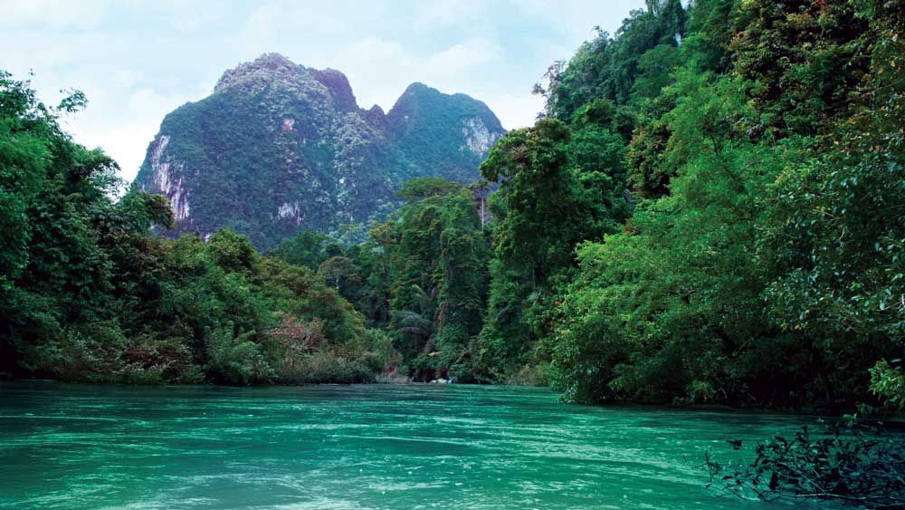 River flowing through Khao Sok