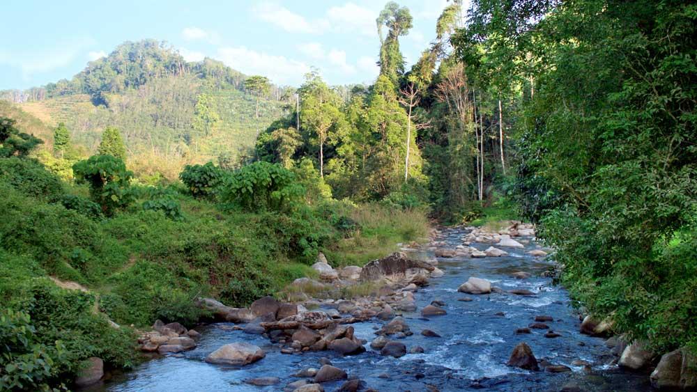 Beautiful view in Phang Nga