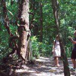 A couple exploring the jungle around Khao Lak