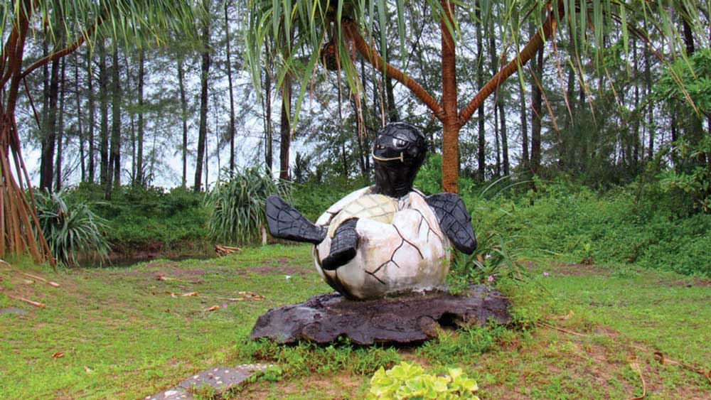 Turtle statue at the sanctuary