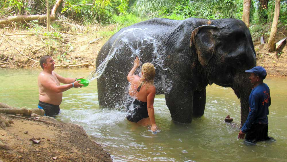 Bathing an elephant