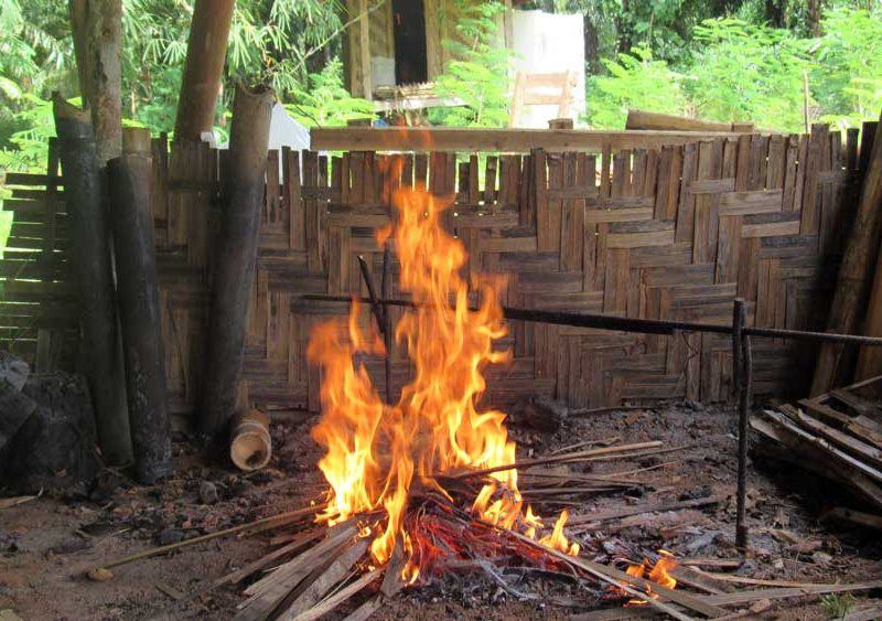 Jungle cooking fire
