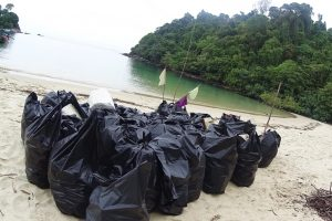 plastic bags beach cleaning plastic bolltes collect