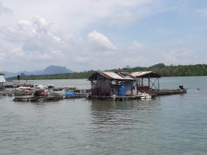 The floating Island: Koh Panyee.