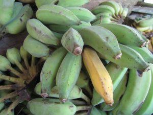 bananas fresh market takuapa